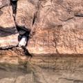 駿府城天守台発掘調査 石垣の刻印(6)