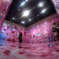静岡県立美術館 「蜷川実花展」(8)