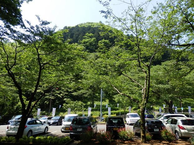 駐車場から見た城山