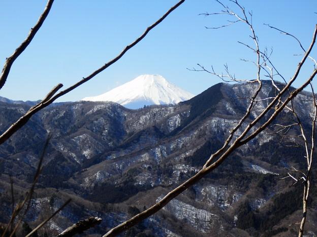 富士山が綺麗に見える場所が