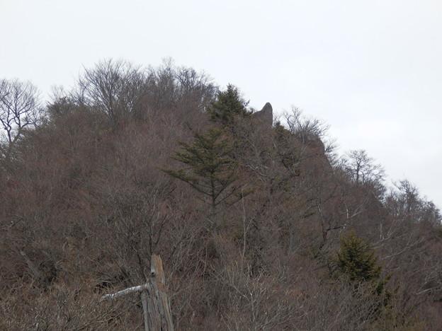 鬼ヶ岳山頂の鬼の角が見えてます^^
