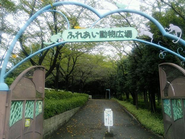 ふれあい動物広場^^