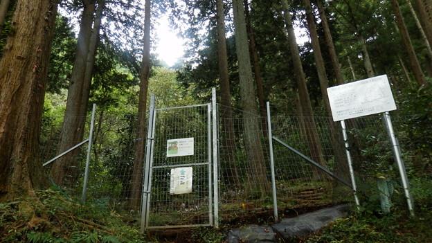 まずは電気の通った鹿柵通過からw