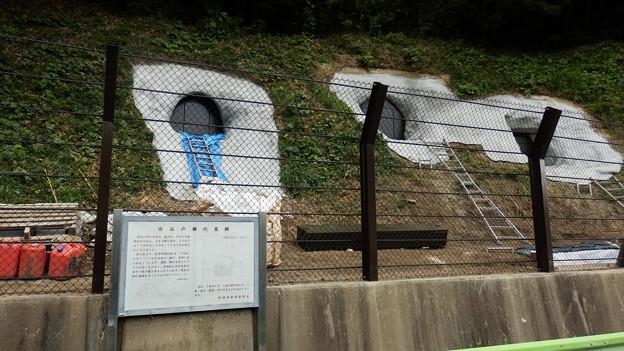 帰りに西谷戸横穴墓群を見て帰ろうと思ったら修復作業中で・・・