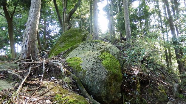 大きな岩が行く手を阻む大きな岩w