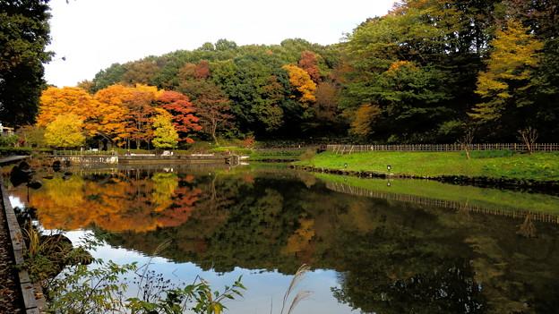 水面に映る紅葉も良いものです^^