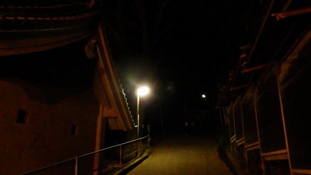 真っ暗な道、多分表参道を進みますw