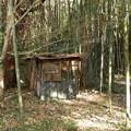 途中で見つけた廃小屋