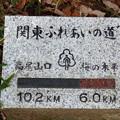 Photos: 立派な石標