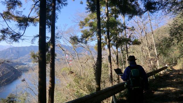 津久井湖を見下ろしながらの廃道歩きとか最高です^^