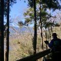Photos: 津久井湖を見下ろしながらの廃道歩きとか最高です^^