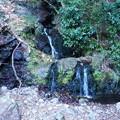 Photos: おっ ちっちゃい滝を発見!