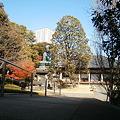 Photos: Garden of Ten_nouji (2)