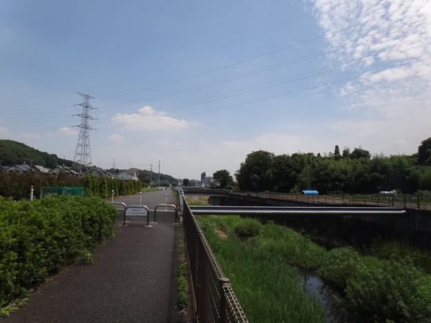 140802 鶴見川