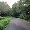 写真: 140907 小山内裏公園