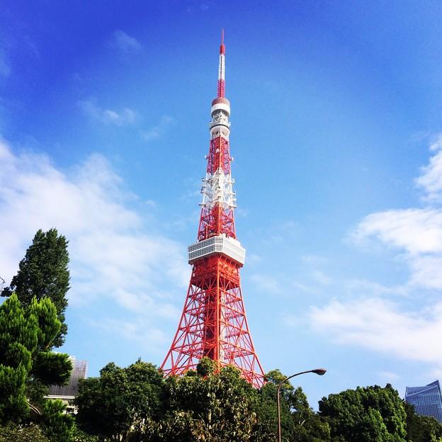 140909 東京タワー