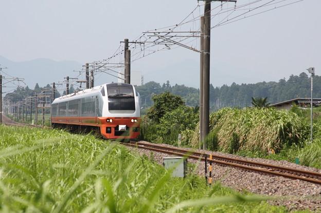 E653系K353編成 9741M 集約臨時列車