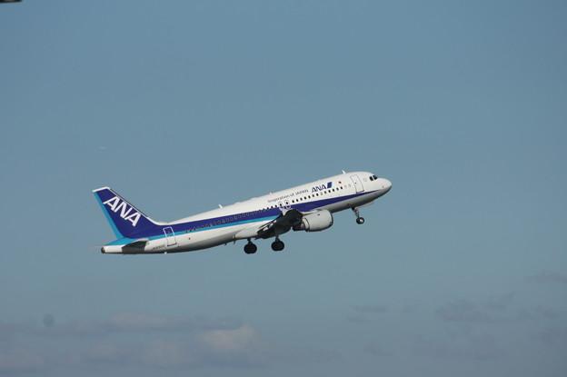 ANA エアバスA320-200 JA8300 3