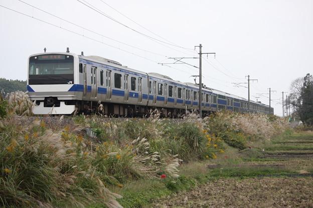 E531系K419編成 1392M 普通上野行