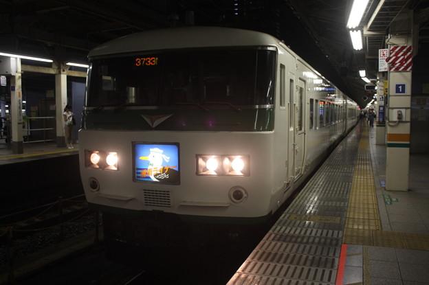 Photos: 185系A6編成 湘南ライナー13号 小田原行