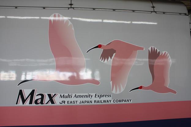 E4系 Max ロゴ