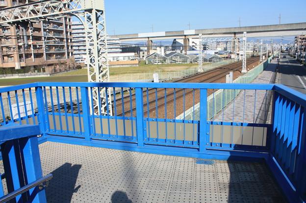 南茨木 IMG_125053