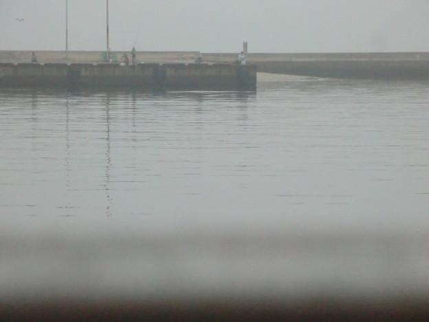 対岸にも釣り人。