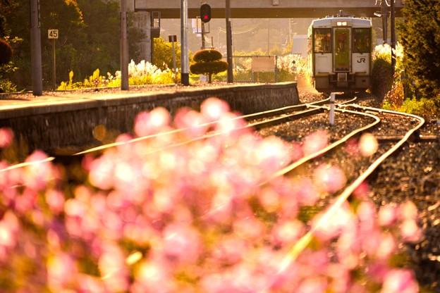 釜石線 似内駅にて