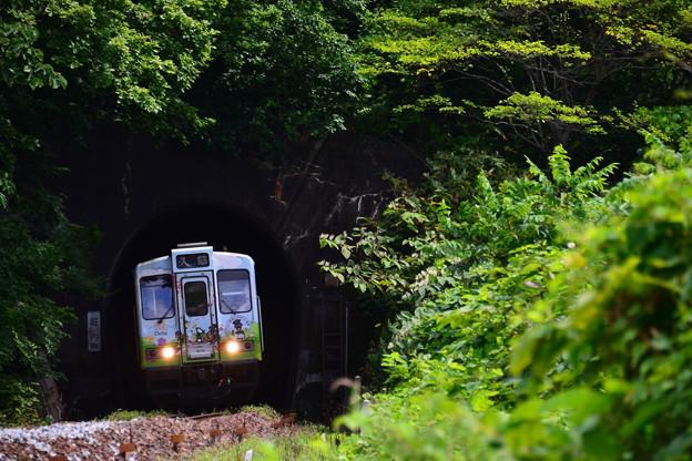堀内駅手前のトンネル