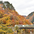 北上線 紅葉の渓谷をはしる2