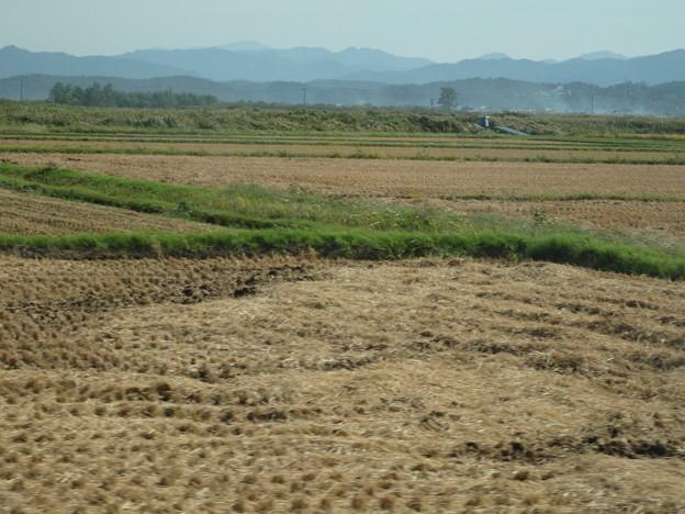 稲刈りの終わったところ