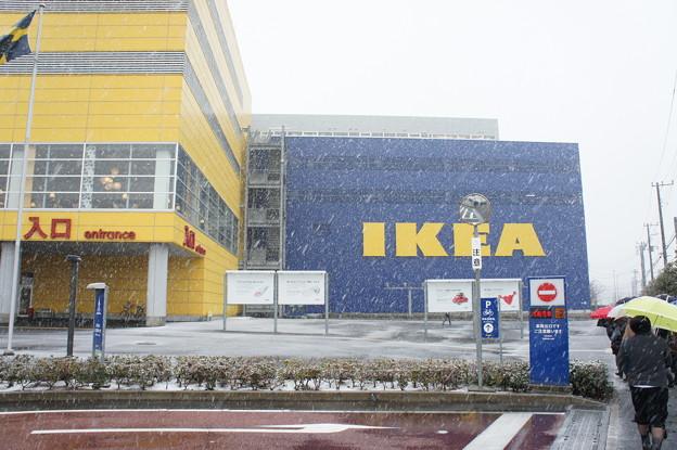 吹雪のIKEA
