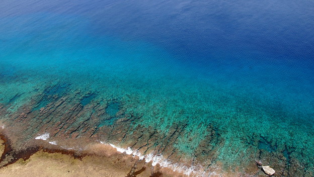Photos: 珊瑚礁