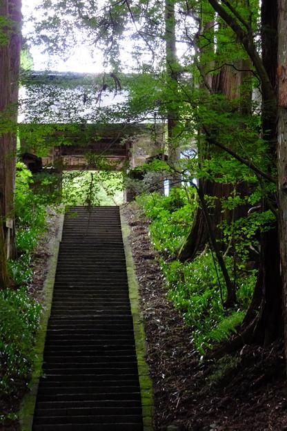 国宝安楽寺参道の階段と門