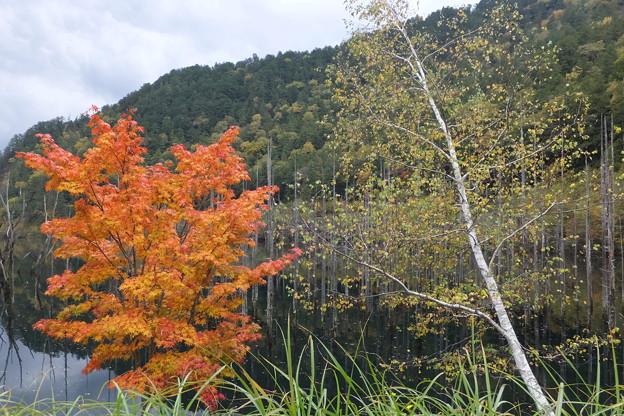先日8月20日頃に訪れた長野県王滝村自然湖ですが秋も綺麗です!
