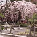 長野県木曽福島町には紅葉、桜が美しい興禅寺があります