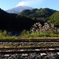 王滝森林鉄道    御嶽山            日本一美しい村にて