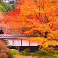 滋賀県湖東三山