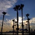 遥かなる空、雲、太陽光線