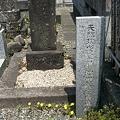 Photos: 増田蔵六先生の墓碑