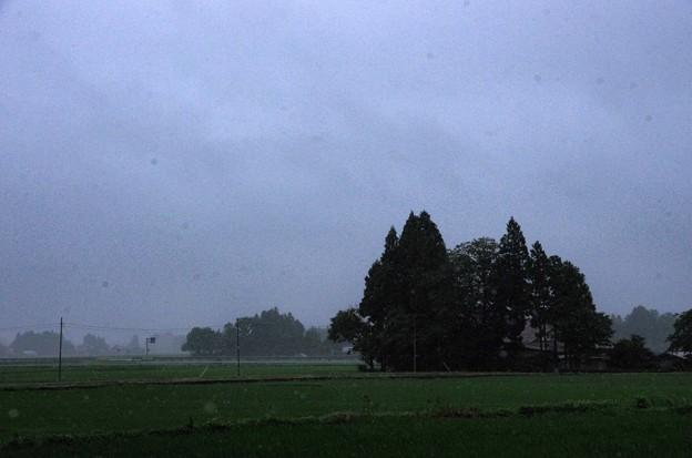 写真00219 大雨と霧で視界良くなし。これは良い方