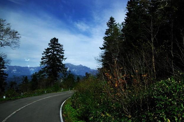 写真00569 乗鞍スカイライン風景