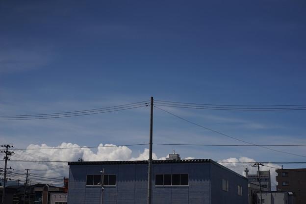 写真: DSC02049