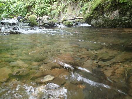 渓流の水面の様子