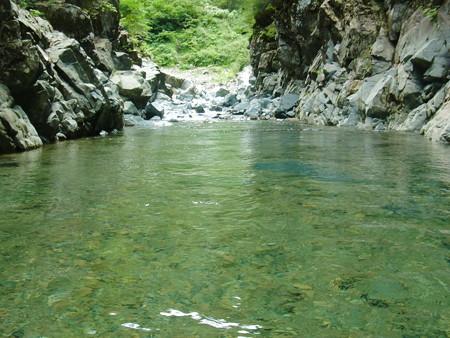 淵の水面の様子