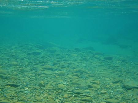 淵の水中の様子