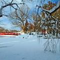 雪に浮かぶ赤い橋