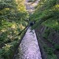 琵琶湖疎水