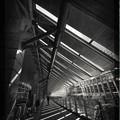 写真: 品川モノクローム