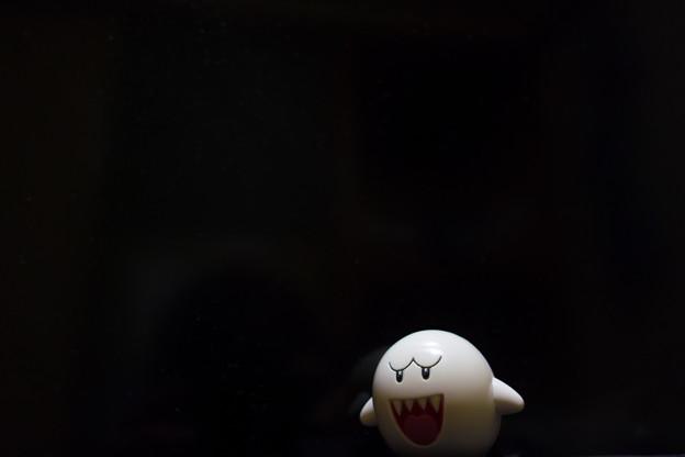 写真: 第118回モノコン テレサ